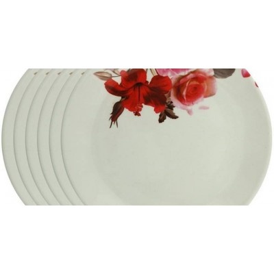 Half Dinner Plates – Pack of 6 Plate